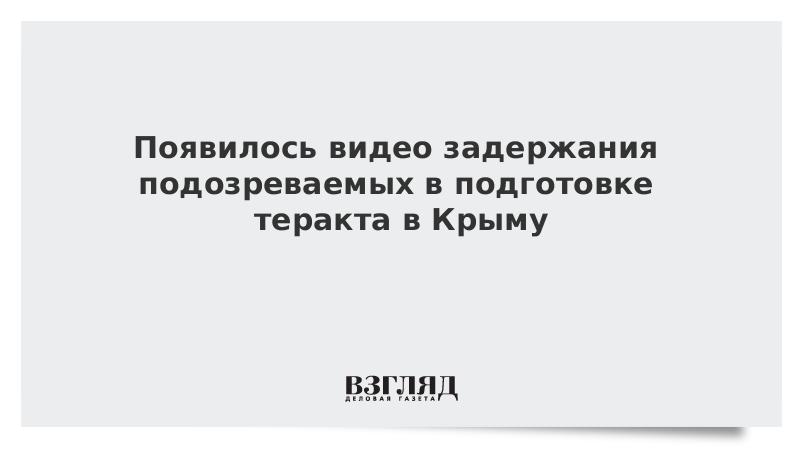 Появилось видео задержания подозреваемых в подготовке теракта в Крыму