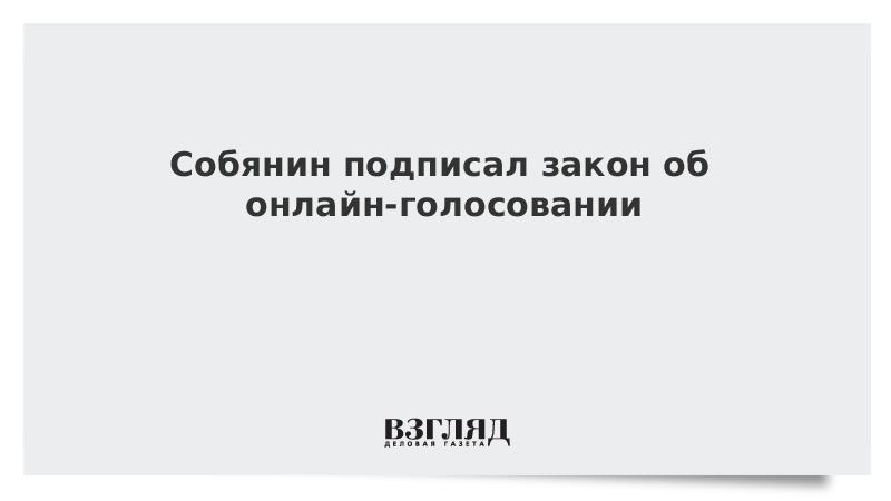 Собянин подписал закон об онлайн-голосовании
