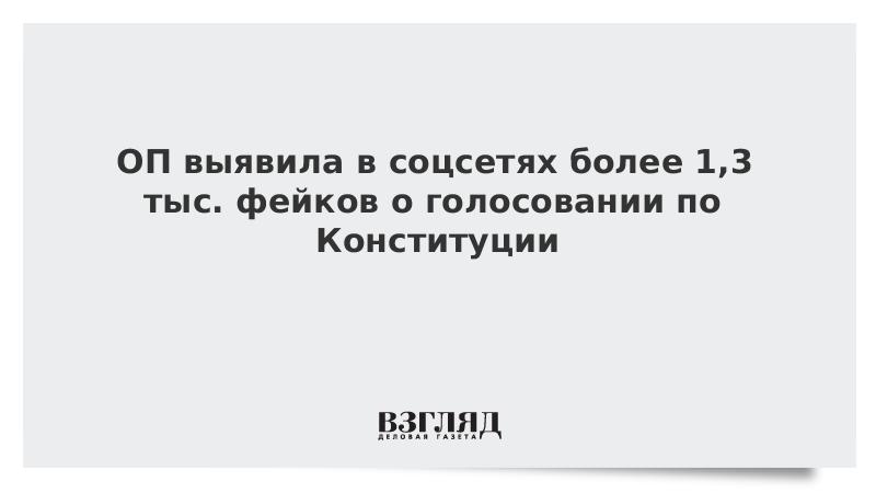 ОП выявила в соцсетях более 1,3 тыс. фейков о голосовании по Конституции