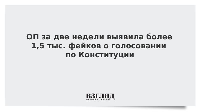 ОП за две недели выявила более 1,5 тыс. фейков о голосовании по Конституции