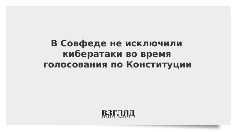 В Совфеде не исключили кибератаки во время голосования по Конституции