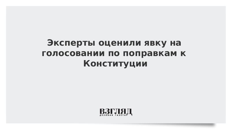 Эксперты оценили явку на голосовании по поправкам к Конституции