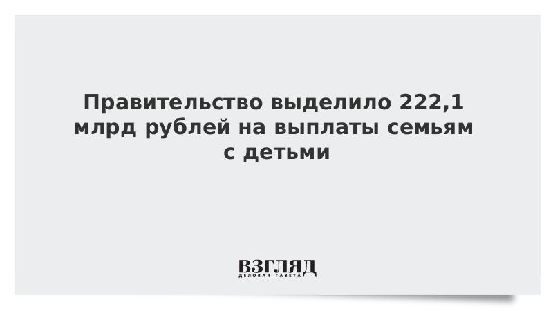 Правительство выделило 222,1 млрд рублей на выплаты семьям с детьми