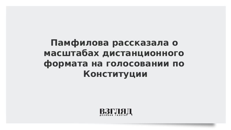 Памфилова рассказала о масштабах дистанционного формата на голосовании по Конституции