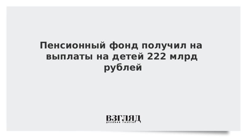 Пенсионный фонд получил на выплаты на детей 222 млрд рублей