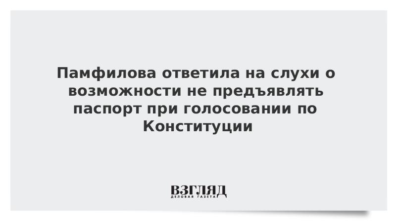 Памфилова ответила на слухи о возможности не предъявлять паспорт при голосовании по Конституции