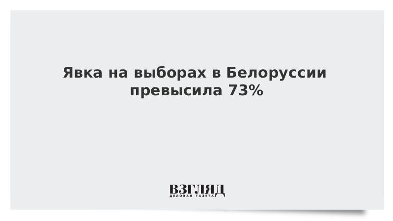 Явка на выборах в Белоруссии превысила 73%