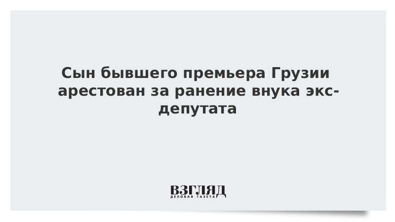 Сын бывшего премьера Грузии арестован за ранение внука экс-депутата
