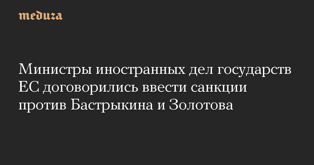 Министры иностранных дел государств ЕС договорились ввести санкции против Бастрыкина и Золотова