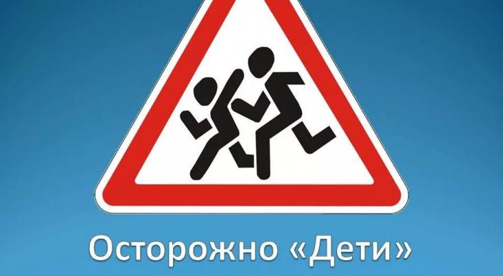«Где безопасность?»: в Башмаково не установили по дороге в школу знак «Дети»