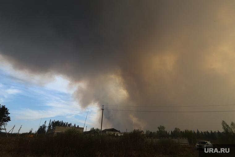 В Кургане озвучили прогноз по пожарам на майские праздники