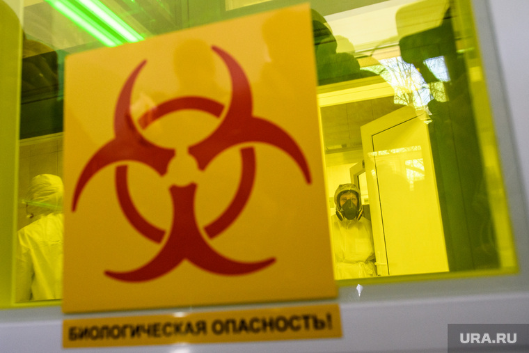В Екатеринбурге больная COVID заразила соседей на пикнике. Все о ЧП, из-за которого продлен карантин