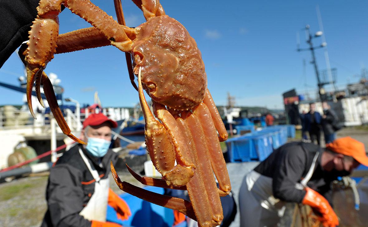 Власти предложили упростить вывоз живых крабов из России