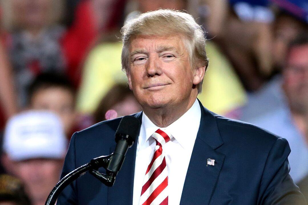 Американские власти раскрыли доходы Дональда Трампа за 2019 год