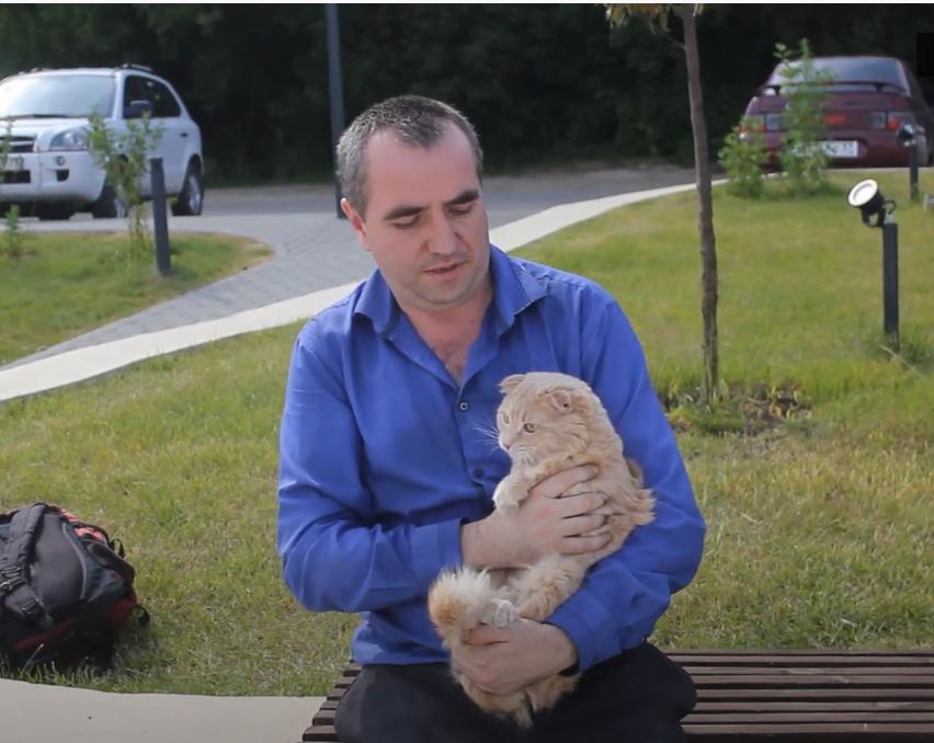 «Продал машину за полцены». Россиянин потратил 800 тысяч рублей на лечение кота