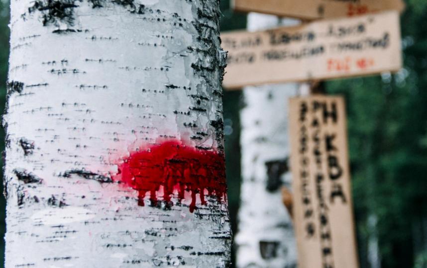 Ощути себя в роли жертвы репрессий