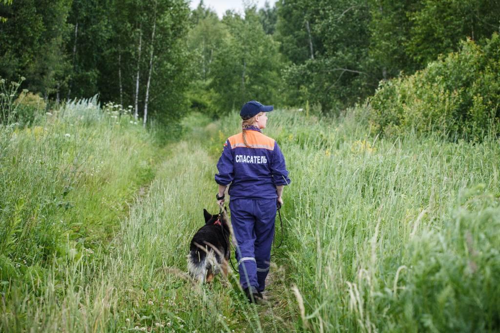 За информацию о пропавшем во Владимирской области первокласснике объявлено вознаграждение