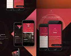 Xiaomi выпустила лимитированное издание своего субфлагмана в честь Брюса Ли
